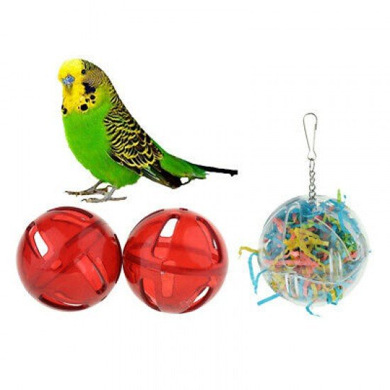 Interactive parrot toy N44556